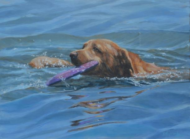 Frisbee Retriever by debbie hughbanks on Flootie.com