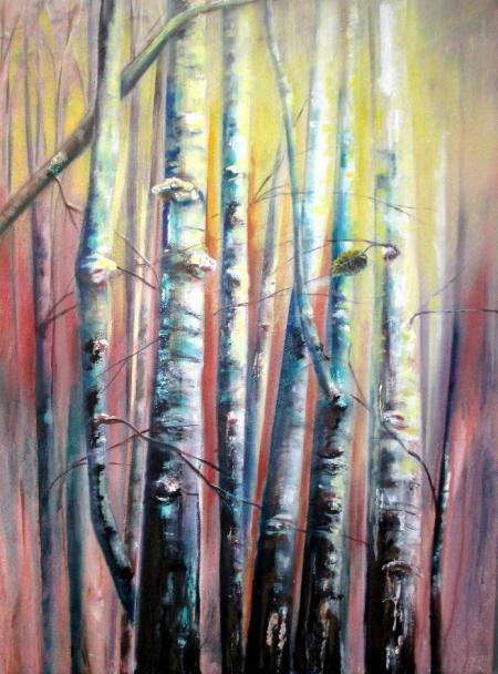 Birches by Vicki A. West