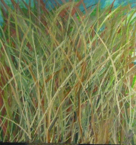 Grasses  by Chuck Harmon
