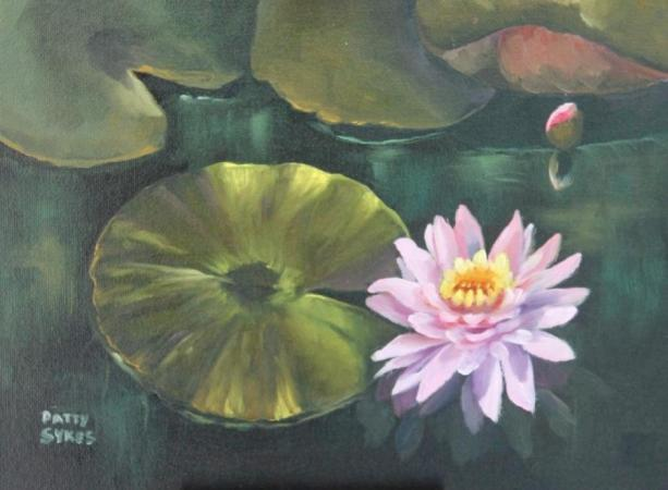 Pink Waterlily by Patty Sykes