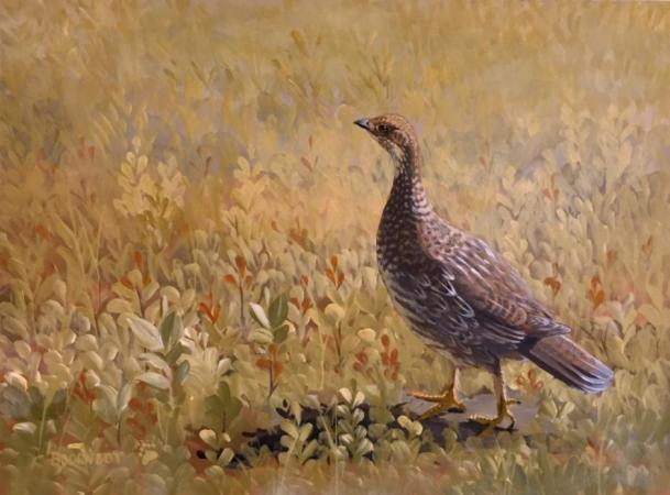 Grouse Hen by Ladd Bjorneby on Flootie.com