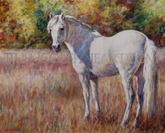 WHITE HORSE MEADOW by Rush Cole