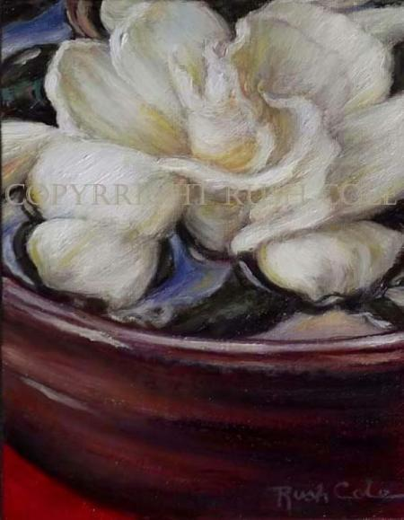 GARDENIA DREAM II  by Rush Cole