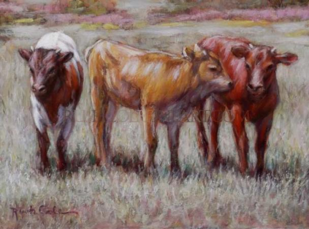 """YOUNG LONGHORNS"" Original Oil Painting by Rush Cole"