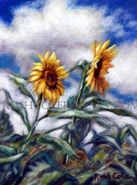 SUNFLOWER SONG by Rush Cole