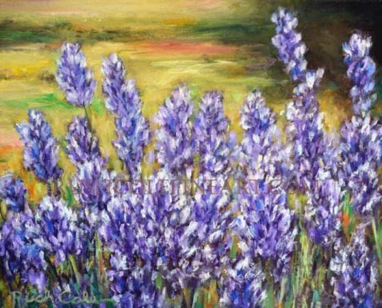 """LATE SUMMER LAVENDER"" by Rush Cole"