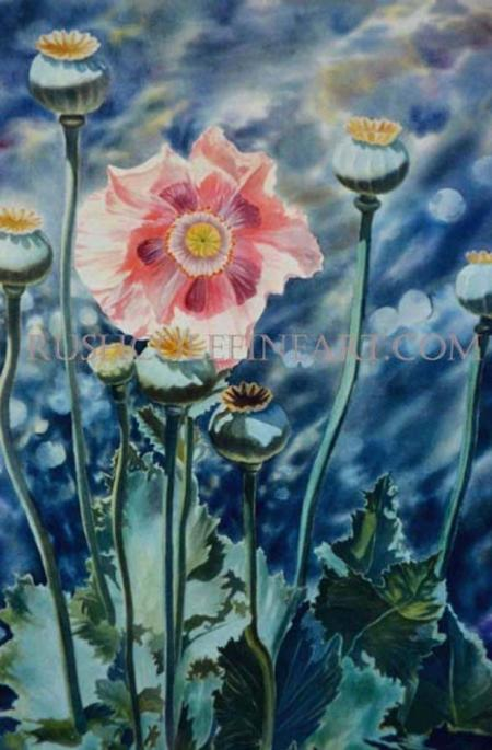 TALL PINK POPPY by Rush Cole