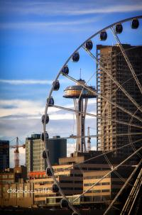 Seattle Sights by Rebecca Tifft