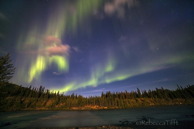 Northern Lights by Rebecca Tifft